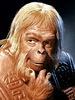 Large dr zaius2a