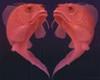 Large fishheart