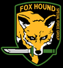 Large foxhound1