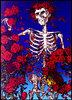 Large skeleton roses