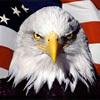 Large america