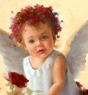 Baby angel with roses a