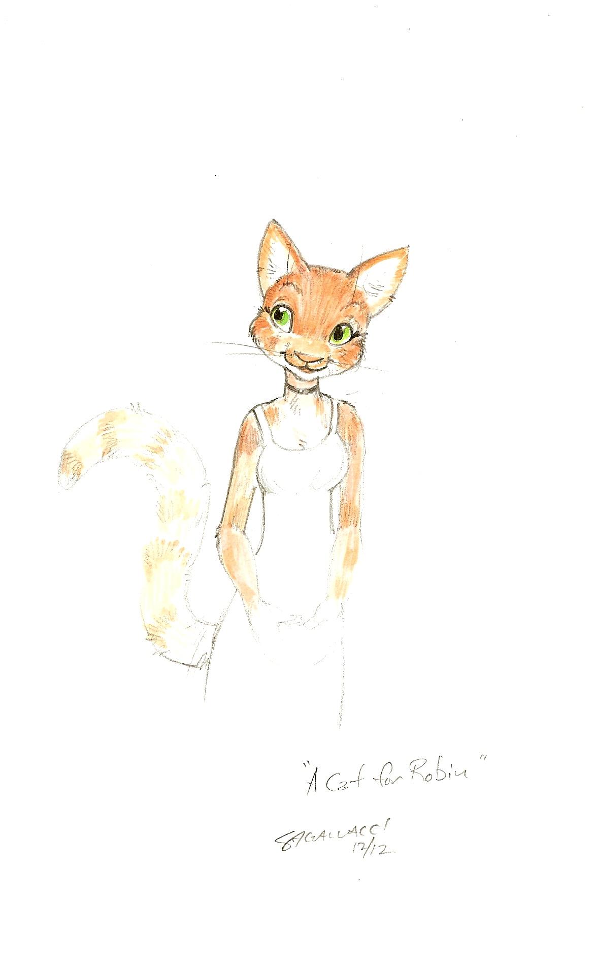 Gallacci cat for robin