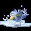 Large poolbird 1