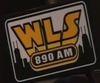 Large wls 1