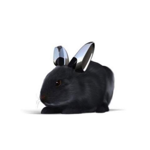 Vw rabbit big