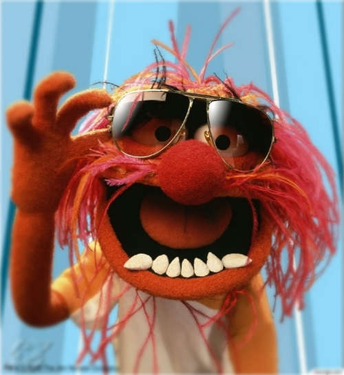 Crazymuppetwithglasses