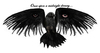 Large raven w eyes and text1