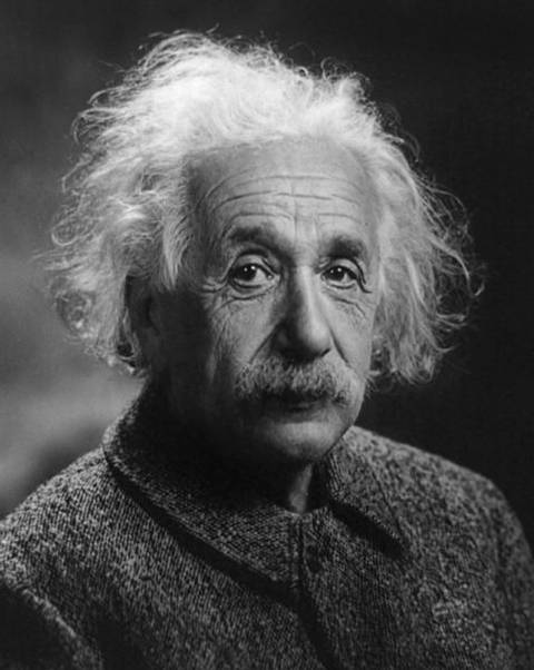 Albert einstein brain i6