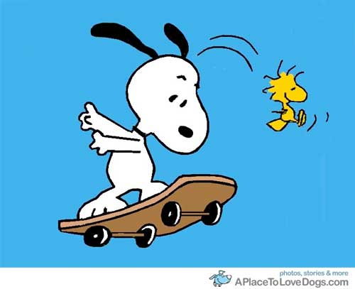 Snoopy rides again