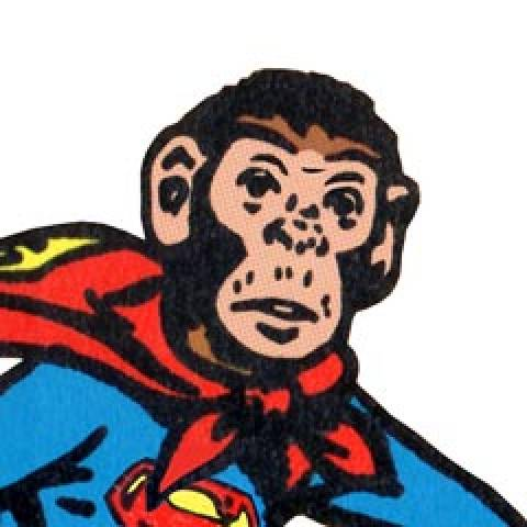 1906664 supermonkey  2