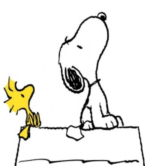 Snoopy woodstock 1