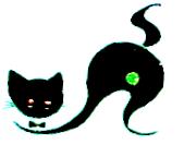 Blk cat