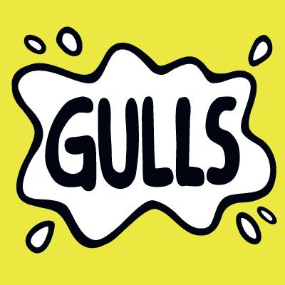 Gulls logo 2014