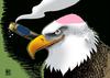 Large bald eagle