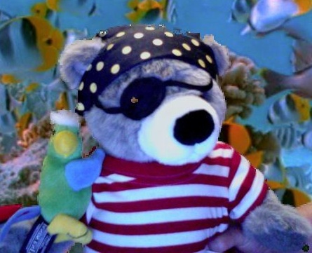 Jr pirate bear